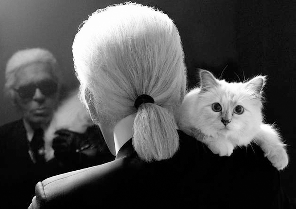 Choupette On Karl Lagerfeld The Fashion Lover